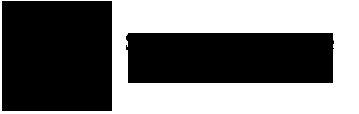 siproinslogotopblk